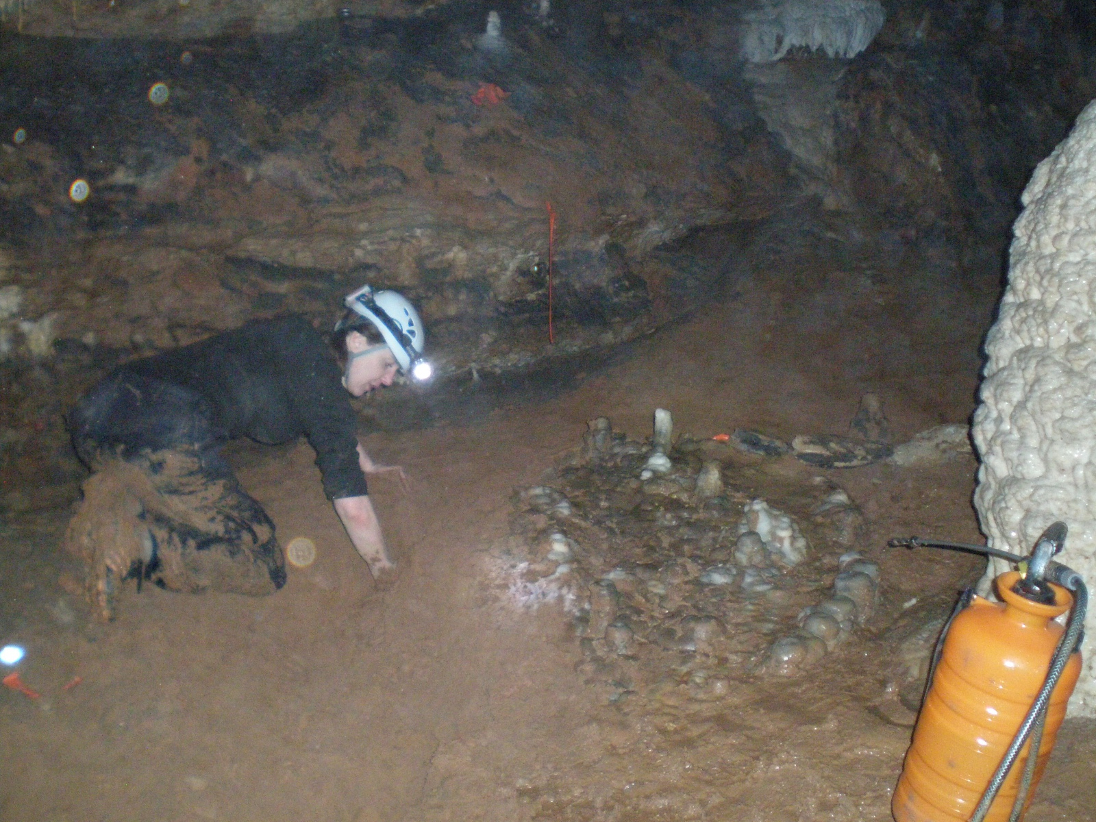 CarrollCave-Restoration-2013-01