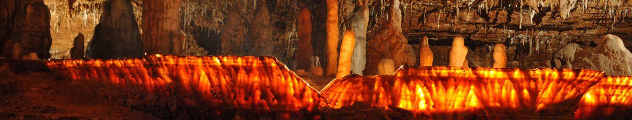 Carroll Cave Conservancy